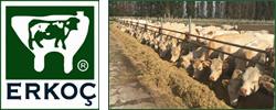 Erkoç Gıda ve Hayvancılık Ltd. Şti. | Vetima